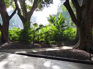 Hyde Park, 8am